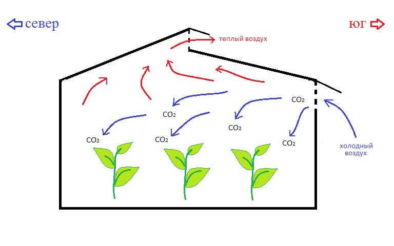 Схема воздушных потоков теплицы Митлайдера