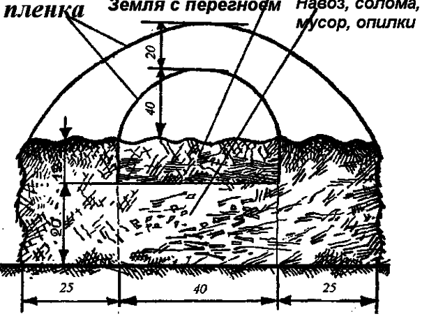 Схема парника для огурцов
