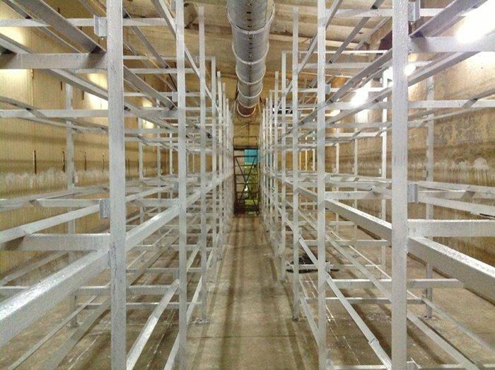 домике грибная ферма в подвале фото результате этой поездки