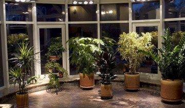 На фото освещение зимнего сада, bauservice.ru