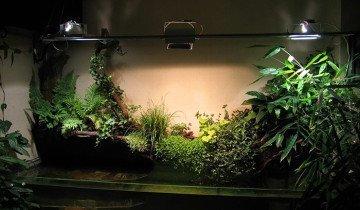Освещение для пальм и домашних растений, catalogdesign.ru