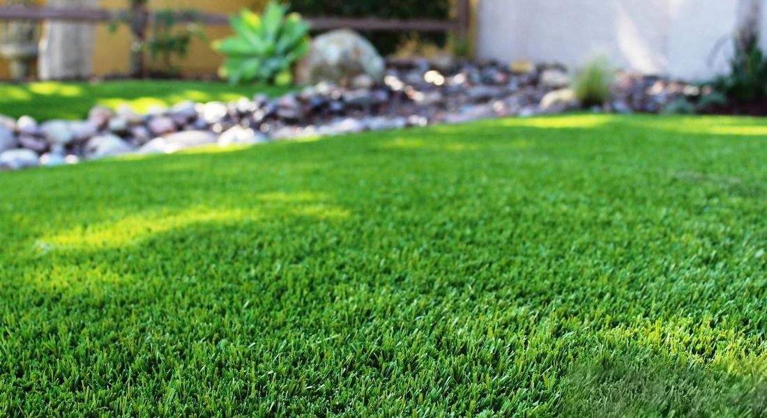 Какой газон лучше для частного дома