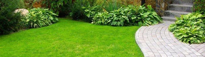 Простые секреты создания газона своими руками