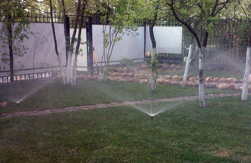 Полив деревьев в саду