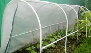 Парник «подснежник» для высоких огородных культур