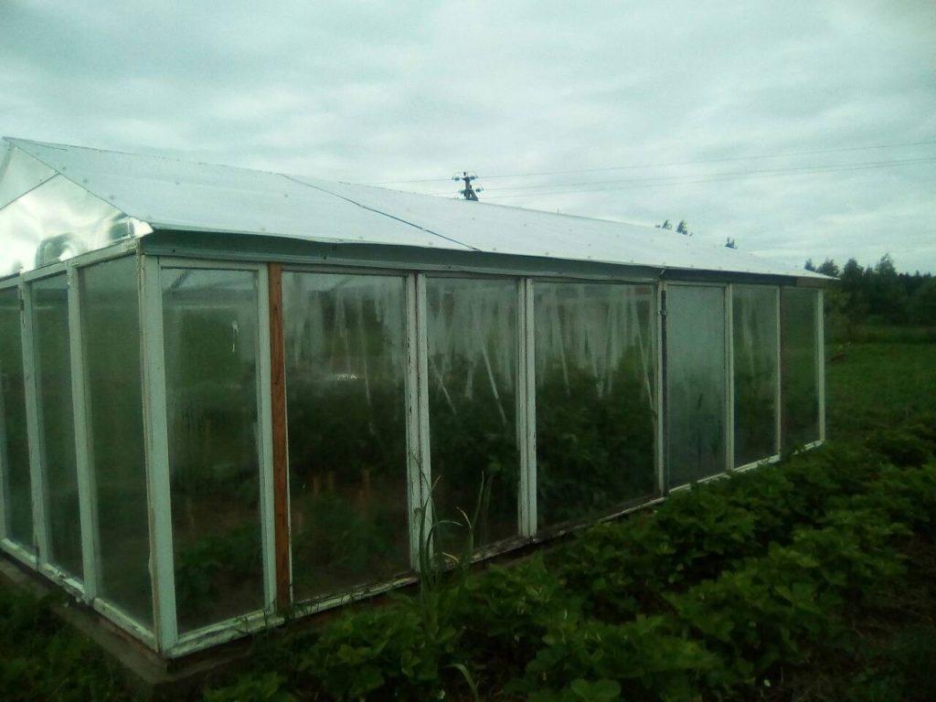 Парник с двускатной крышей из поликарбоната