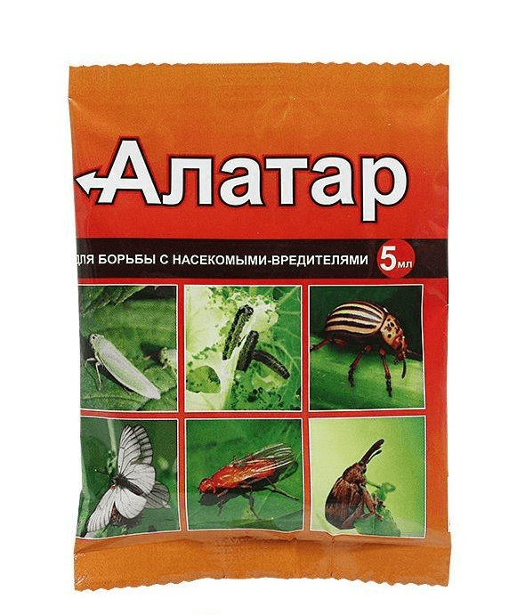 Алатар