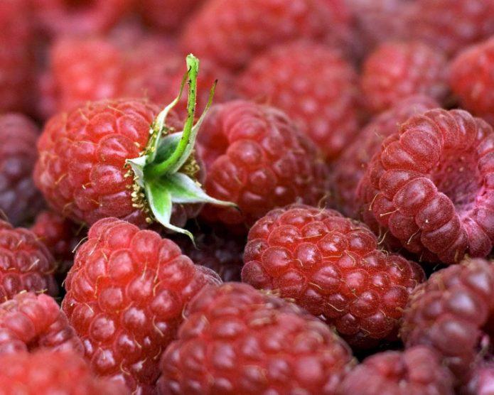 Спелые ягоды Карамельки