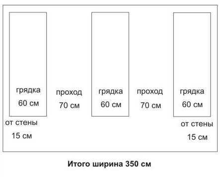 Оптимальная ширина теплицы