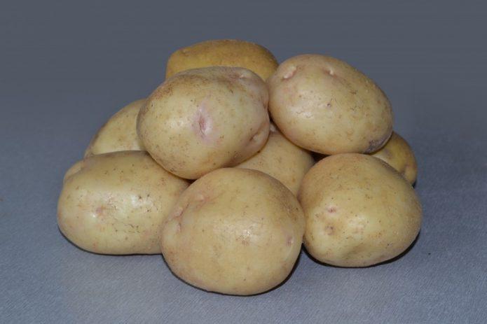 Подготовка семенной картошки