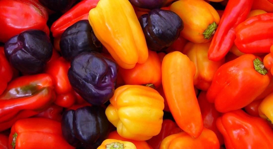 Чем полезен болгарский перец для здоровья человека
