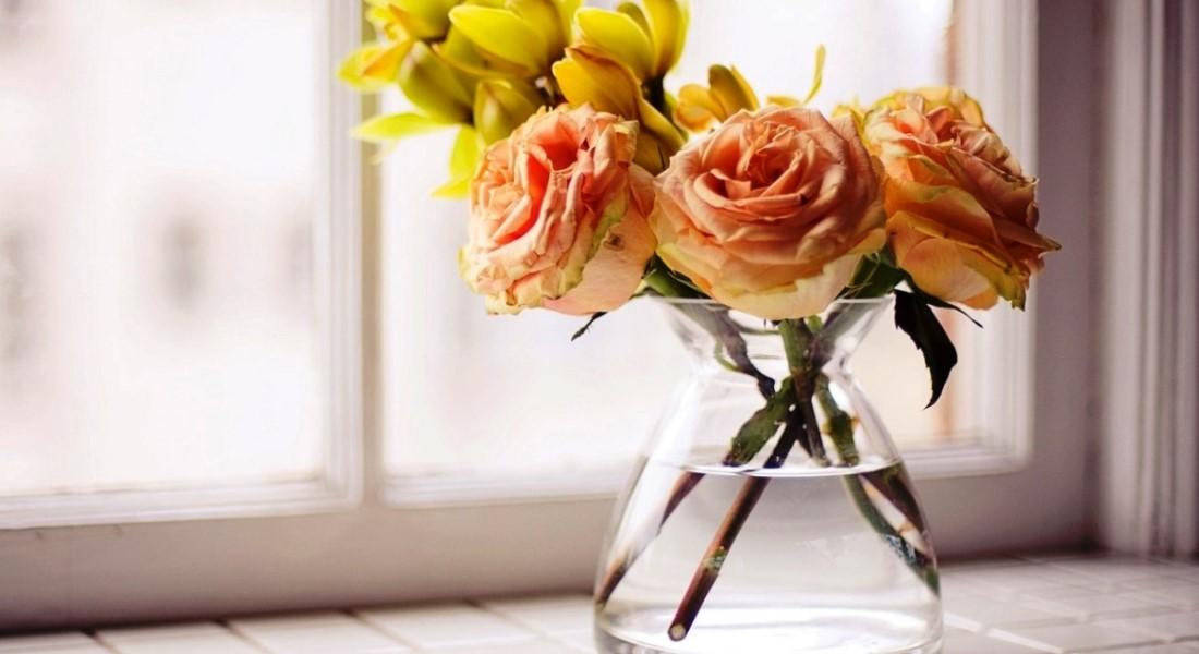 В какую воду ставить розы — Цветы365