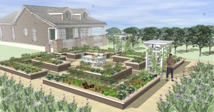 План дизайнерского огорода