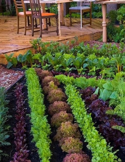 Пейзажный огород