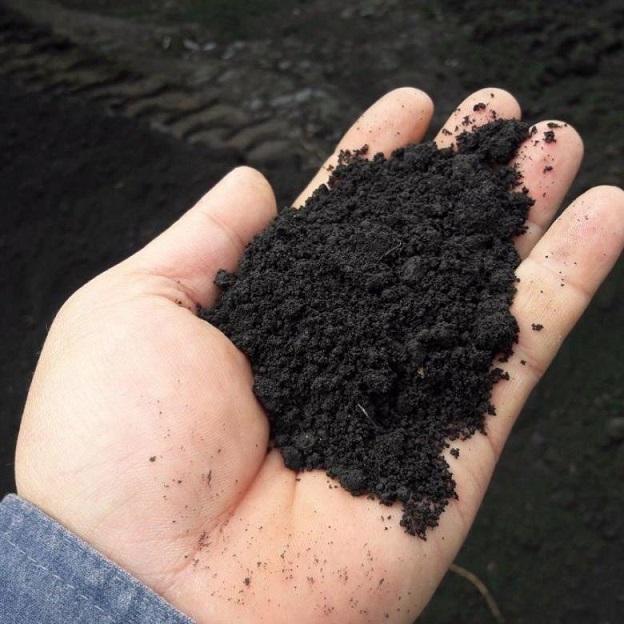 Чернозёмная почва