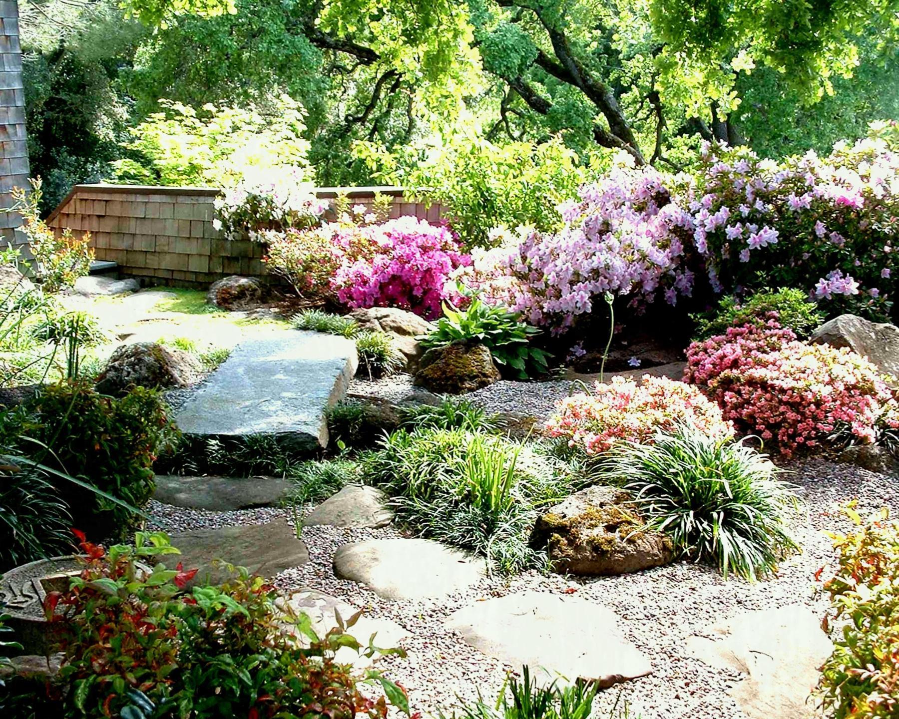 альпинарий в саду фото признаки онкологией
