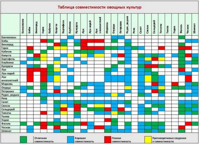 Таблица совместимости огородных культур