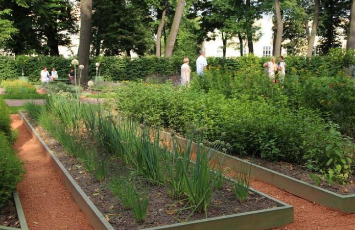 Огород на монастрыском подворье